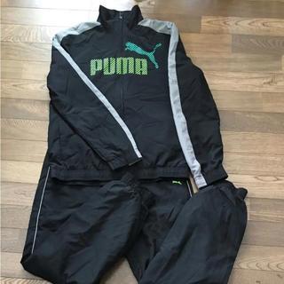 プーマ(PUMA)のプーマ ウィンドブレーカー 上のみ(ジャケット/上着)