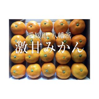 超人気商品!愛媛 八幡浜産 激甘みかん(20玉)(フルーツ)