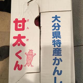 甘太くん(紅はるか)(野菜)