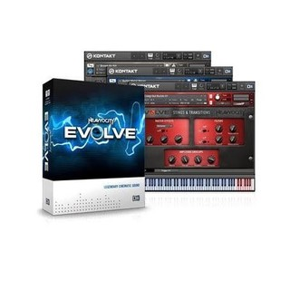 Native Instruments Evolve R2(ソフトウェア音源)