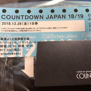 カウントダウンジャパン 18/19 28日券 1枚(音楽フェス)
