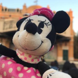 ディズニー(Disney)の株主優待(その他)