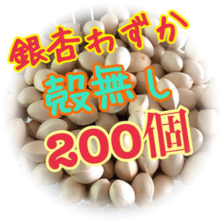 銀杏(野菜)