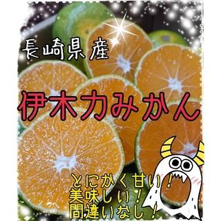 お陰様で大好評! 長崎県産 伊木力みかん3キロ (フルーツ)