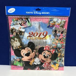Disney - 実写 壁かけカレンダー ディズニー 2019年度