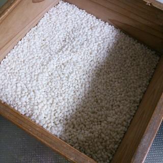 みやこがね(米/穀物)