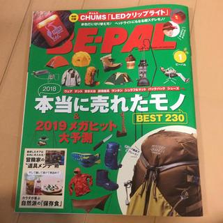 ビーパル1月号 雑誌(趣味/スポーツ)