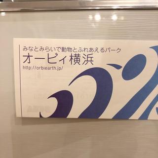 オービィ横浜 パスポート(遊園地/テーマパーク)