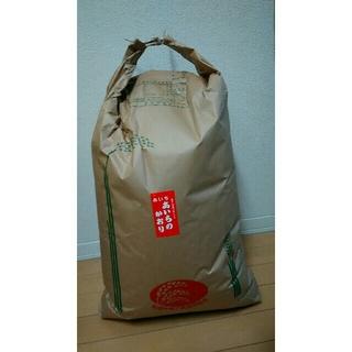 お米(玄米)あいちのかおり 5kg(米/穀物)
