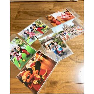 Disney - 篠山紀信 ディズニー 公式 キャラクター ミッキー 写真