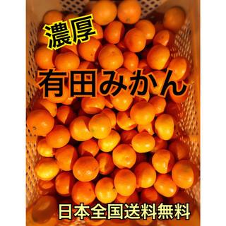 有田みかん 家庭用 5kg(フルーツ)