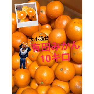 ココペリ 様専用 有田みかん混合10キロ