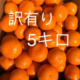 淡路島から訳ありみかん(サイズミックス)(フルーツ)