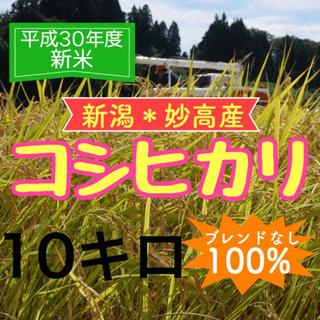 【農家直送】送料無料 お米 平成30年度 新米 新潟・妙高産コシヒカリ 10キロ(米/穀物)