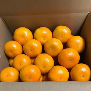 広島県産 みかん いしじ4.5kg(フルーツ)