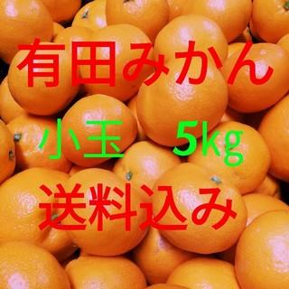 有田みかん🍊小玉🍊5㎏🍊送料込み(フルーツ)