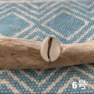 新品 シェルリング 宝貝 タカラガイ 指輪(リング(指輪))