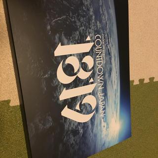 2枚ペア COUNTDOWN JAPAN 18/19 12月28日 12/28(音楽フェス)