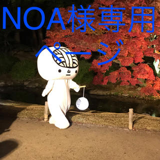 NOA様専用ページ ユーカリ50センチ20本(その他)