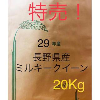 平成29年産 長野県産 ミルキークイーン 白米 20キロ (米/穀物)