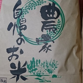[訳あり中米] 30年産 あきたこまち 20㌔ 白米(米/穀物)