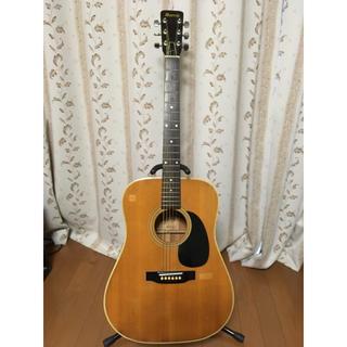 クリッシーモリス(Chrissie Morris)のMorris アコースティックギター W-18【送料無料】(アコースティックギター)