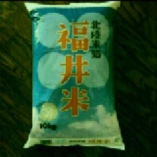 お米10kg 小分け可能(米/穀物)