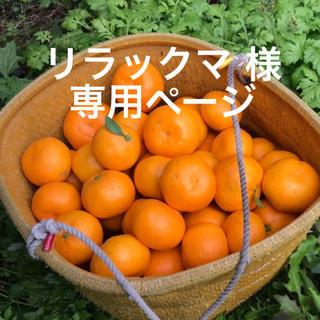 愛媛みかん リラックマ様 専用ページ(フルーツ)