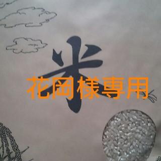お米  29年度産 10kg(米/穀物)
