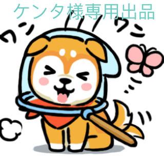 ケンタ様専用ページ(オーダーメイド)