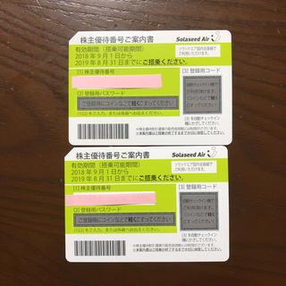 ★ソラシドエア 株主優待券 2枚セット 送料無料 ★(航空券)