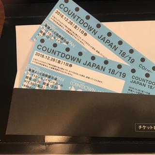 カウントダウンジャパン チケット 28日 2枚(音楽フェス)