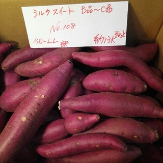 超お得‼ 訳あり☆限定品☆シルクスイートのB品C品大小混ぜて約13Kです。(野菜)