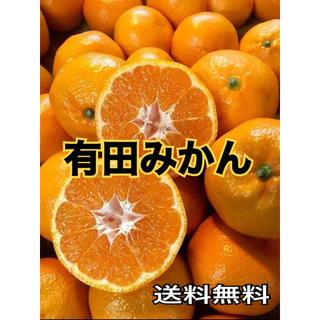 送料無料 有田みかん5キロ詰め合わせ(フルーツ)