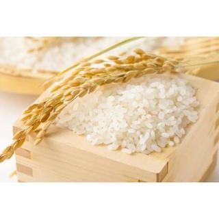 29年度 あきたこまち(米/穀物)