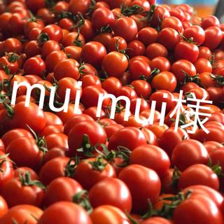 muimui様専用 ミニトマト6kg(野菜)