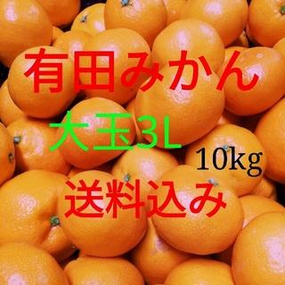 有田みかん🍊大玉🍊10㎏箱に満杯🍊送料込み(フルーツ)