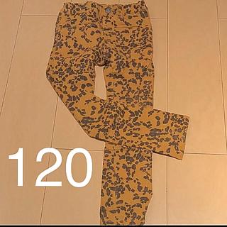 エフオーキッズ(F.O.KIDS)の120 レオパードズボン(パンツ/スパッツ)