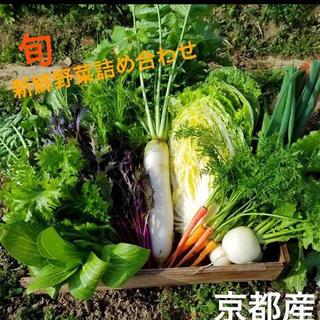 今が旬!朝採り京野菜詰め合わせ 無農薬 減農薬野菜☆