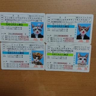 【値下げ】なめねこ 免許証 セット(カード)