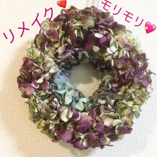 秋色紫陽花のドライリースアンティークワインレッド(ドライフラワー)