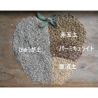 ふるい通し済み『ひゅうが土 』使用の多肉植物の土!約3ℓ(その他)