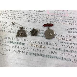 神戸松蔭女子学院 大阪女学院高校 神戸高校 専用