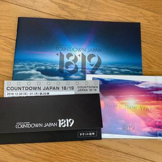 CDJ カウントダウンジャパン 後2日券(音楽フェス)