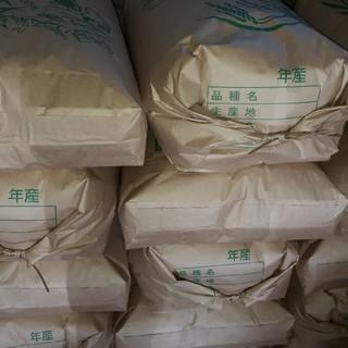 農家直送  新米お米 玄米20kg精米 送料 無料