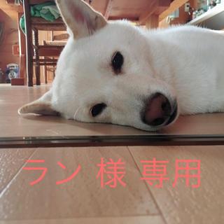 ラン 様 専用(インテリア雑貨)