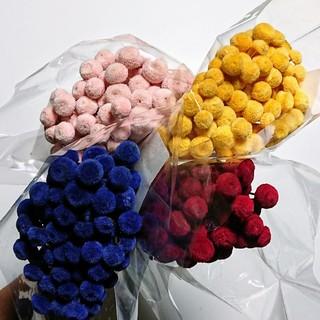 ボタンフラワー/4色各5本or10本のアソート小分けセット(ドライフラワー)