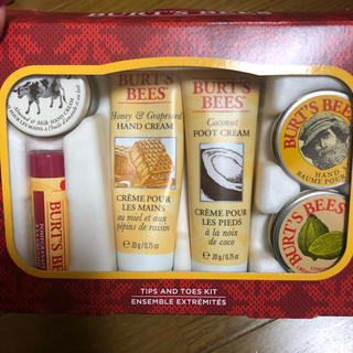 バーツビーズ(BURT'S BEES)のBURT'S BEES Tips And Toes kit(その他)
