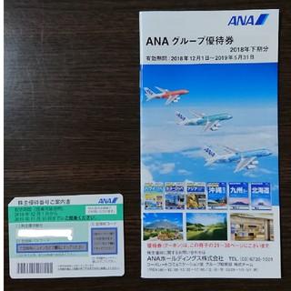 ANA株主優待券 1枚 有効期限2019/11/30(航空券)