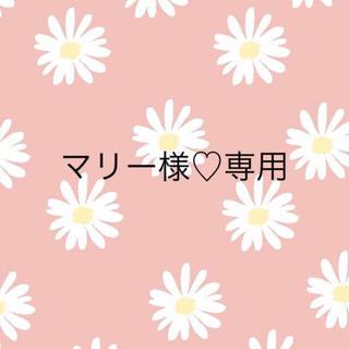 マリー様♡専用(外出用品)